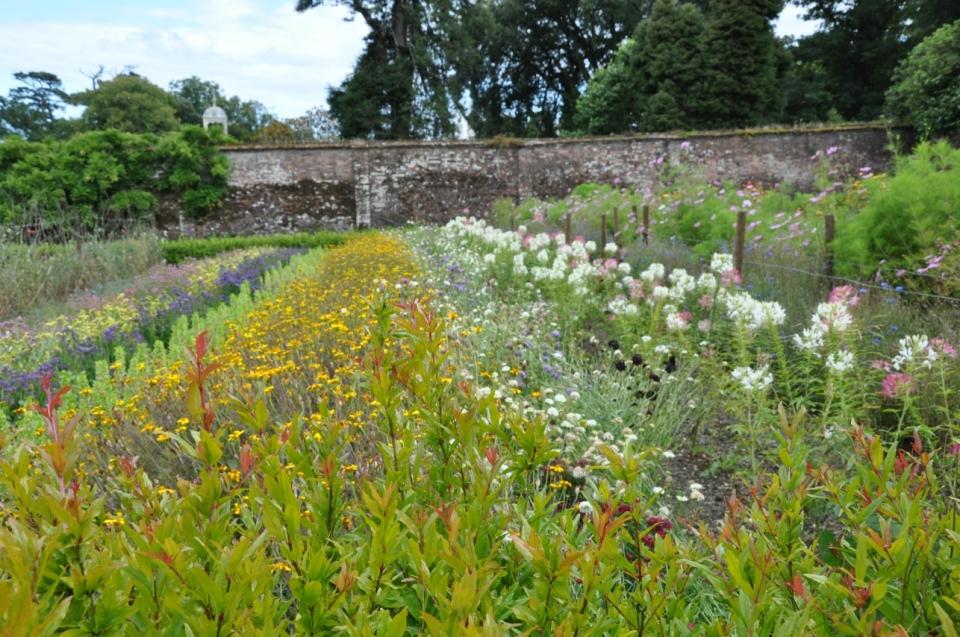 Heligan gardens