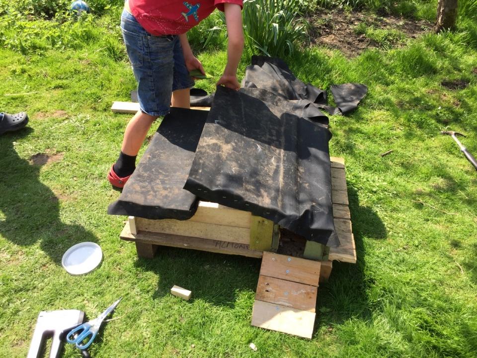 Building a Hedgehog House