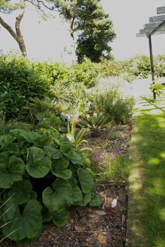 Our Garden 2019