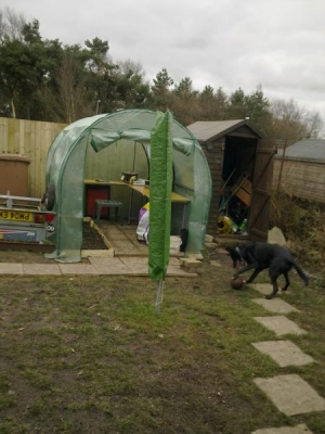 front view of our poly tunnel