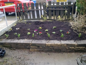 our new raised bed